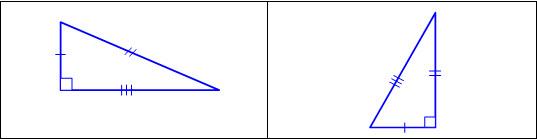 4.6D5.jpg